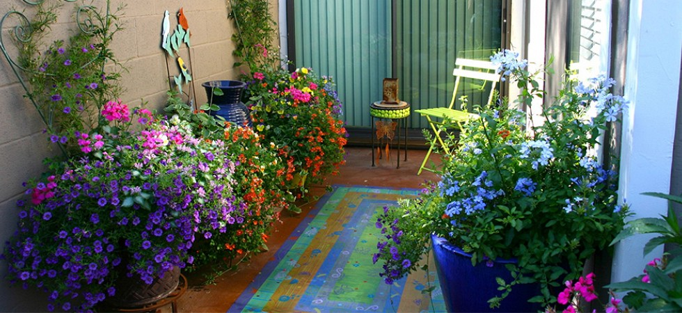 Small Patio with colorful Pots